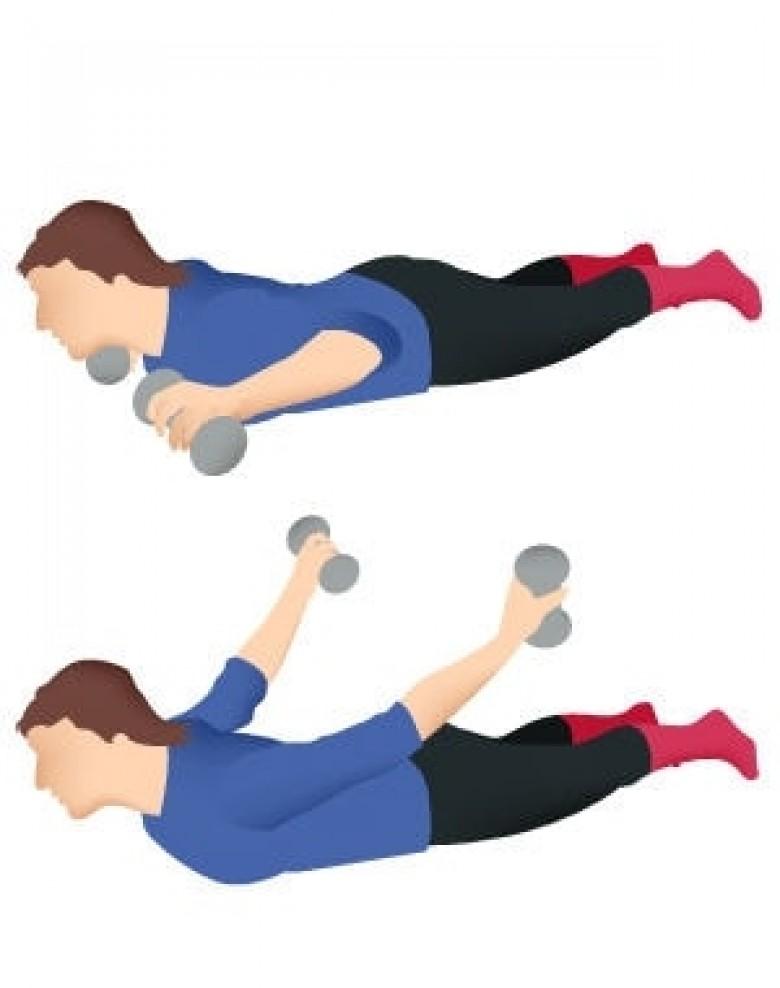 10 exercices pour muscler son dos