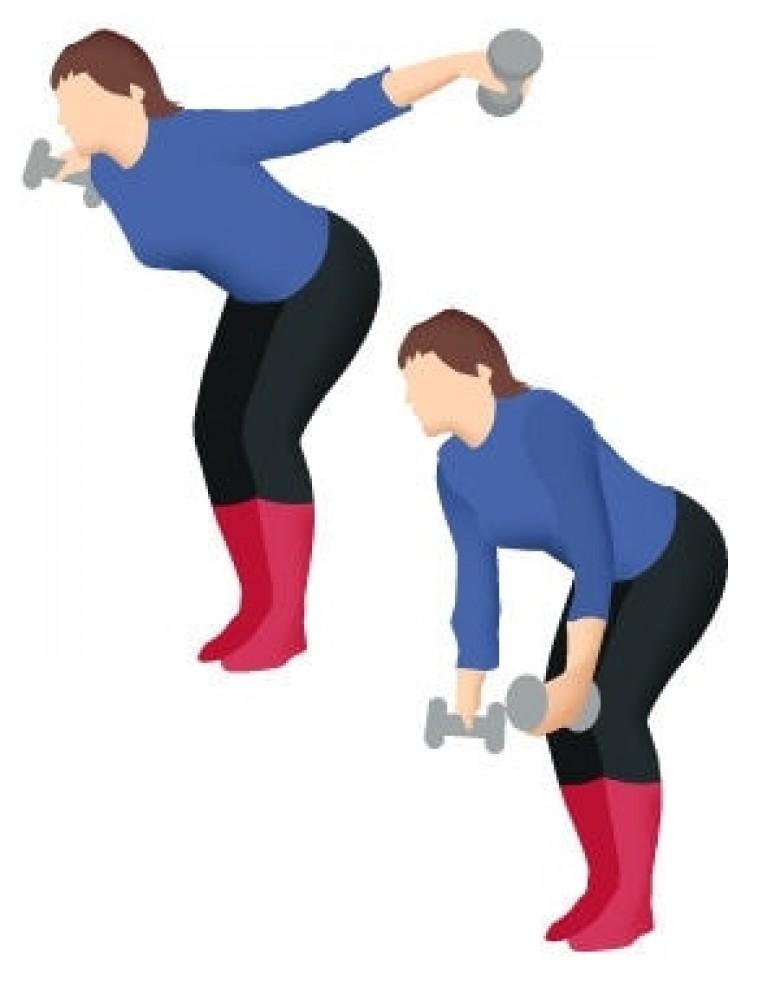 10 exercices pour muscler son dos - Les Éclaireuses