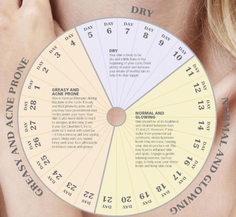 règle cycle menstruel