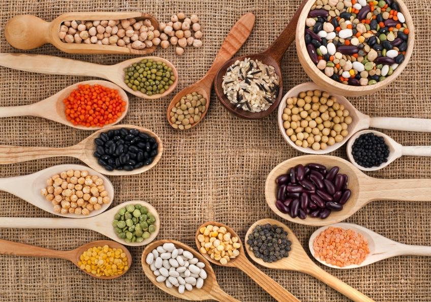 10 délicieuses recettes à base de protéines
