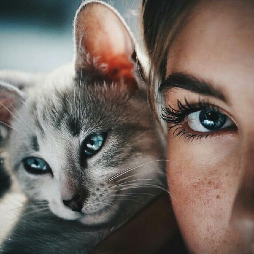 15 raisons qui prouvent qu'avoir un chat est bien mieux qu'avoir un mec