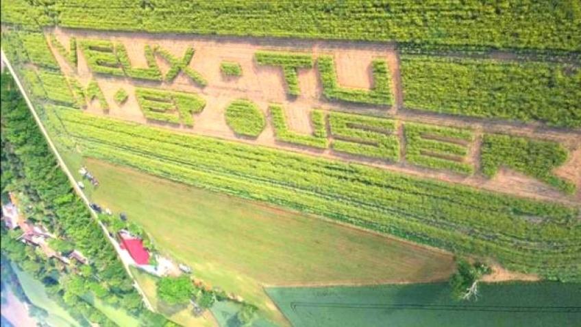 Un nantais inscrit sa demande en mariage dans un champ de colza !