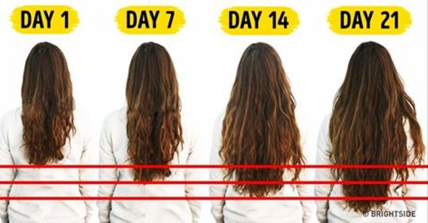 pousse des cheveux par jour