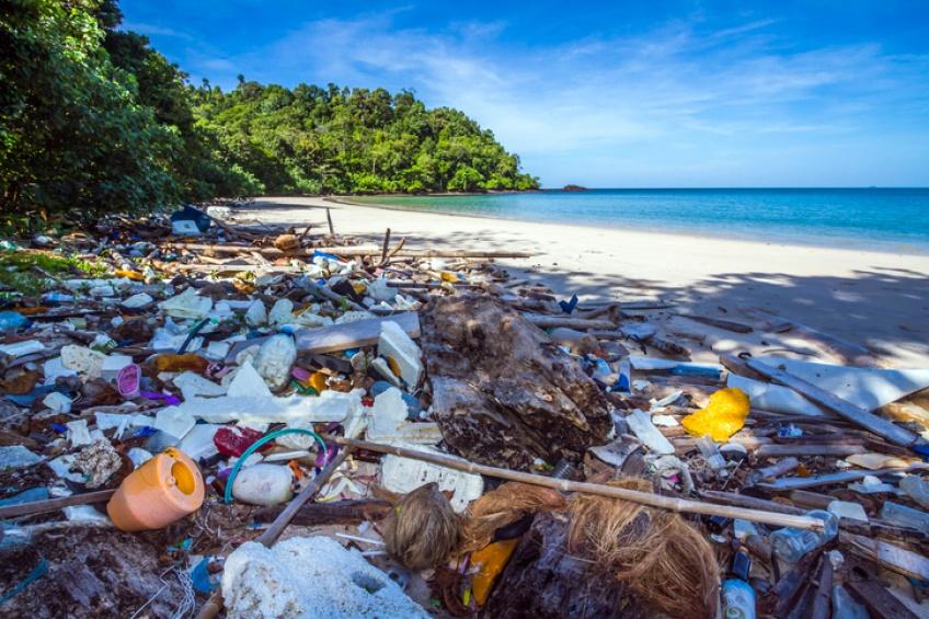 Des scientifiques créent une enzyme dévoreuse de plastique par accident !