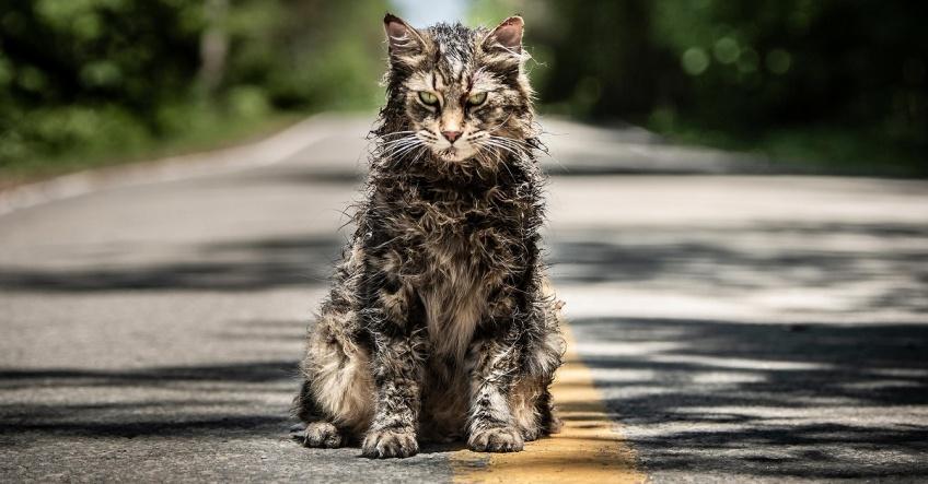 """""""Simetierre"""", nouvelle adaptation de Stephen King, un trailer glaçant !"""