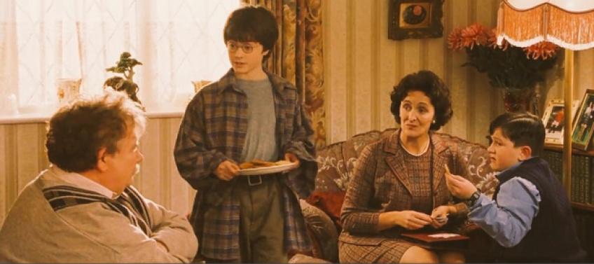 Harry Potter Théroie Les Reliques de la mort Les Dursley