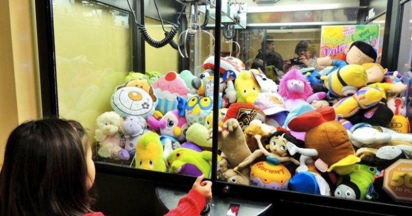 Vidéo choc : des chiots vivants à attraper dans un jeu d'arcade en Chine