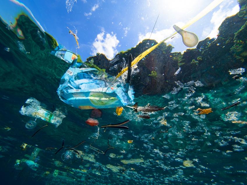 île plastique