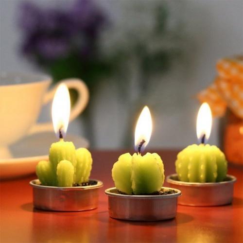 Leisial - Bougie cactus