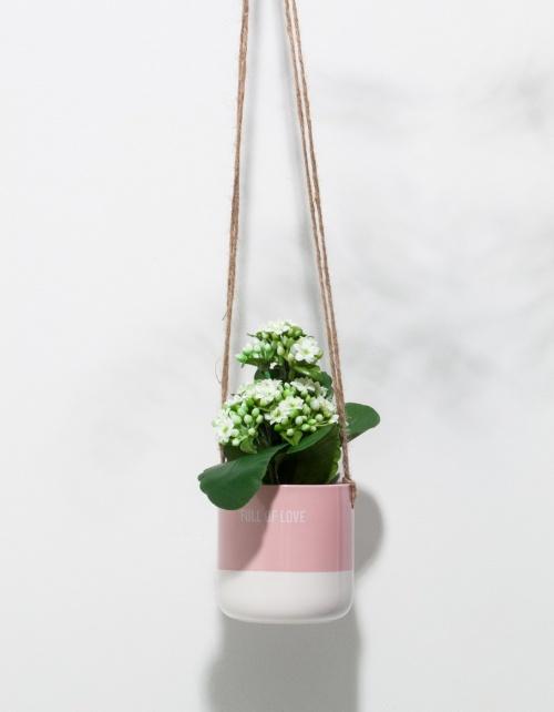 Stradivarius - Pot à suspendre