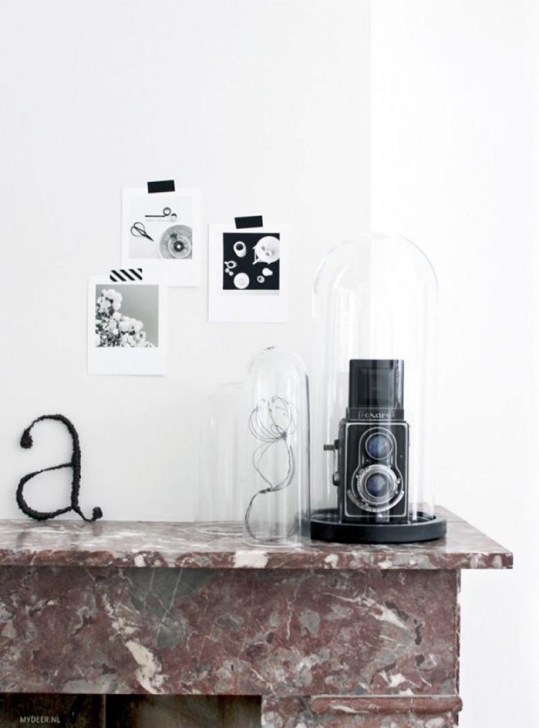 Que Mettre Sous Une Cloche En Verre la cloche en verre : la plus belle façon d'exposer ses objets !