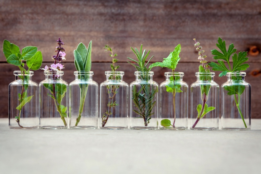 10 huiles essentielles indispensables pour se soigner au naturel