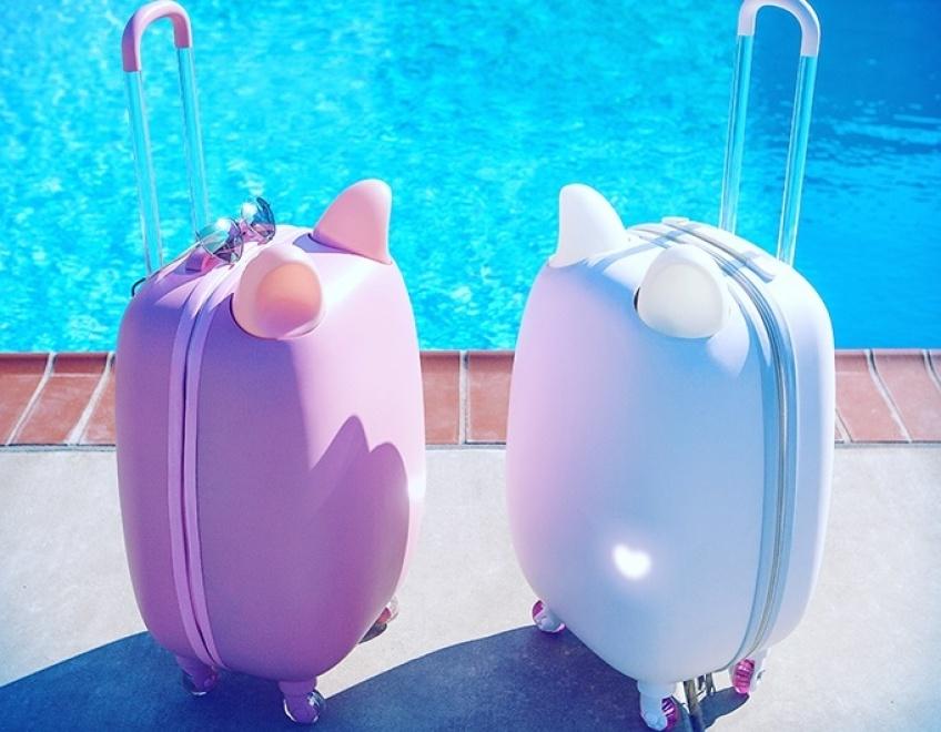 #Mignonnerie : partez en voyage avec une valise chat