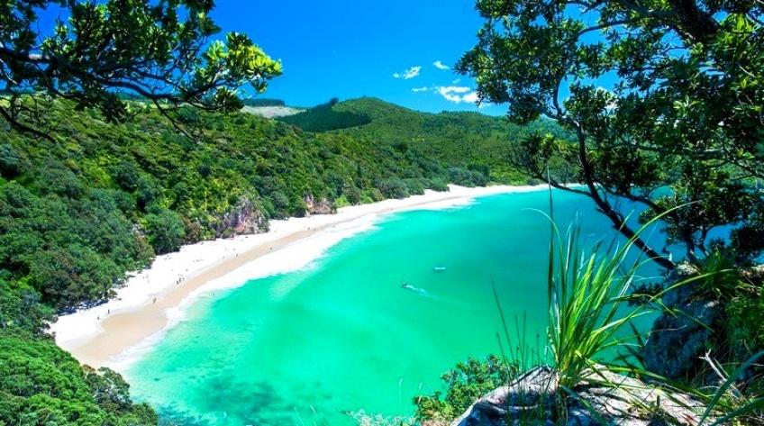 Un voyage payé et un entretien organisé par la Nouvelle-Zélande pour tous ceux qui veulent s'y installer !