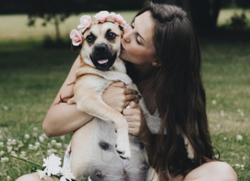Découvrez l'émouvant photoshoot entre une chienne enceinte et sa maîtresse!