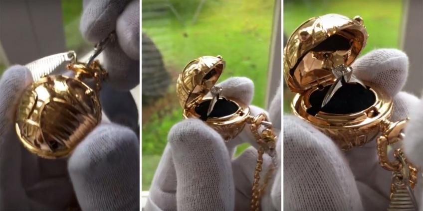 Un homme fait sa demande en mariage avec un vif d'or et c'est adorable!