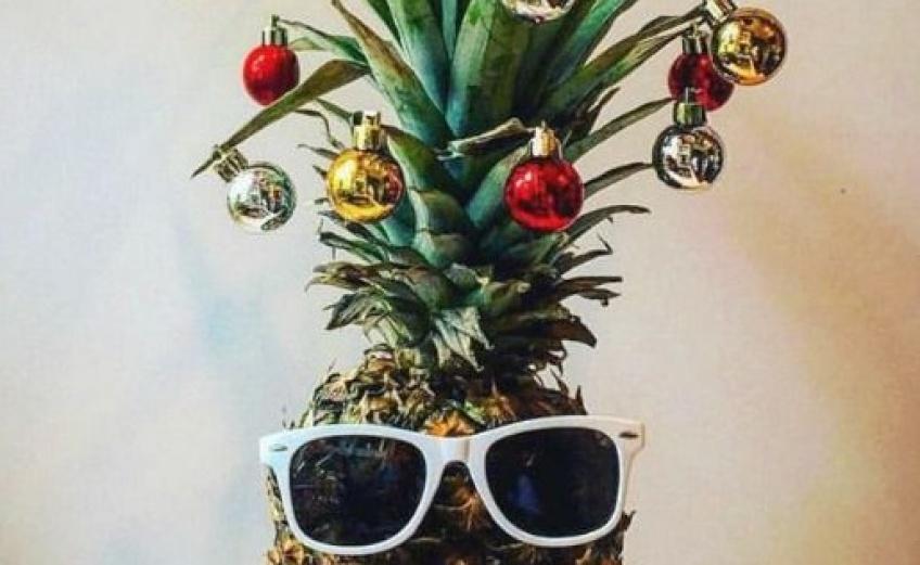 Cet hiver, craquez pour un ananas de Noël !