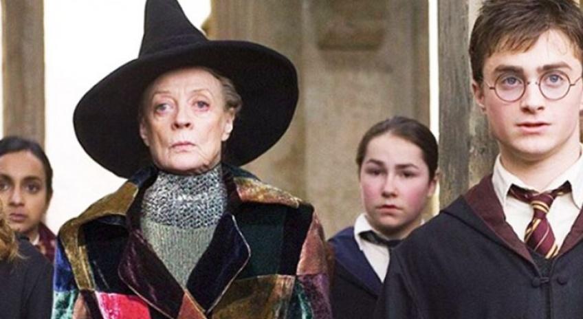 Quand les personnages d'Harry Potter s'habillent à la mode !