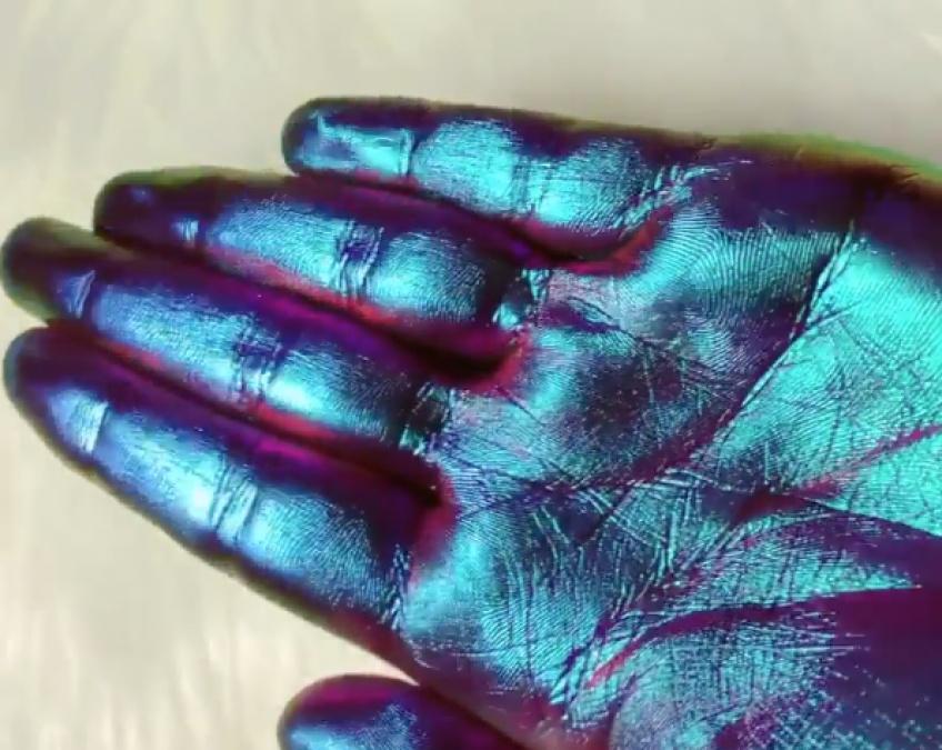 Il existe un pigment qui change de couleur !