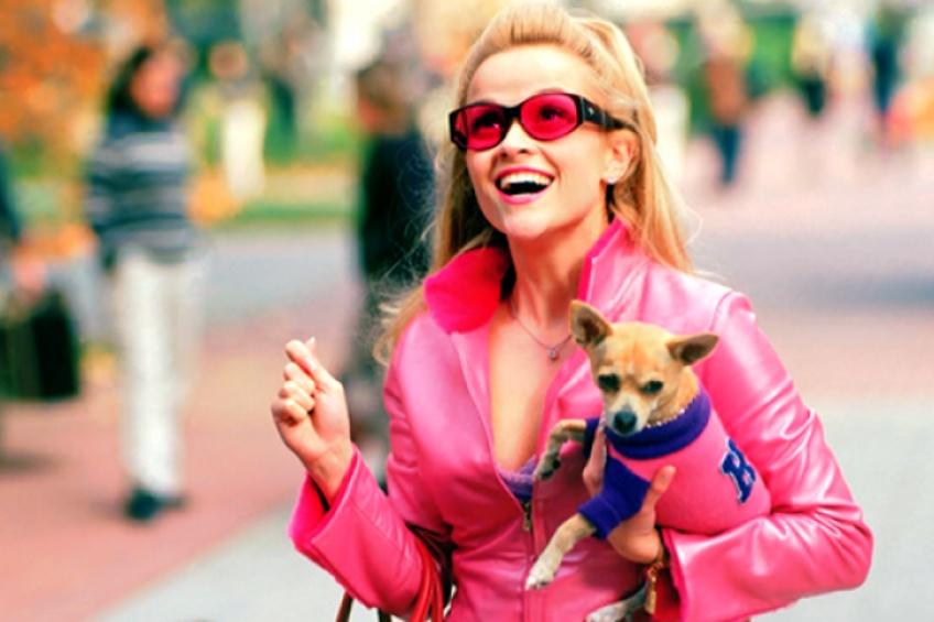 C'est officiel : La Revanche d'une Blonde revient pour un troisième film haut-en-couleur !