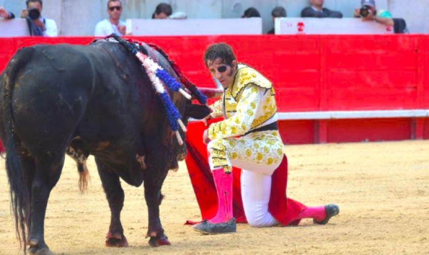 Un torero manque de perdre la vie en pleine corrida