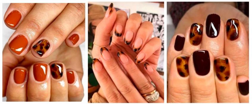 Leopard Nails : la tendance qui envahit la toile !