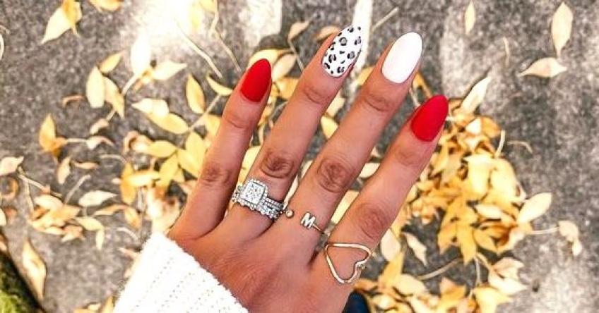 Motif animal et gradient, le combo parfait pour sublimer vos ongles !
