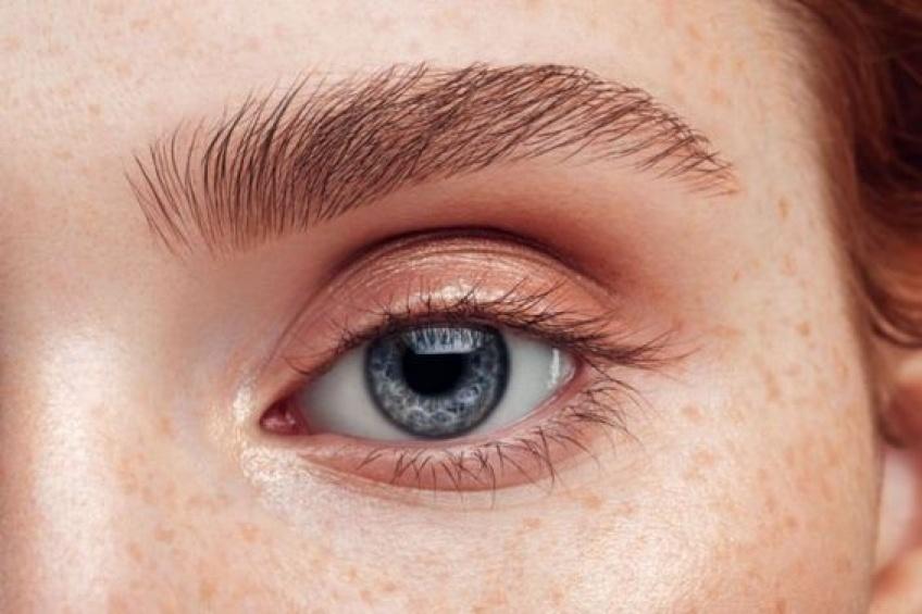 Comment avoir une ligne de sourcils charnue ?