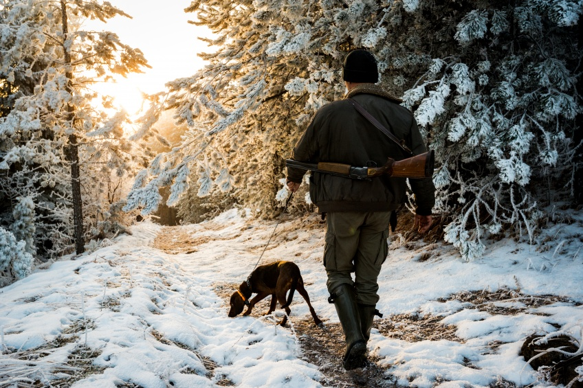 Les chasseurs bénéficieront de dérogations au confinement