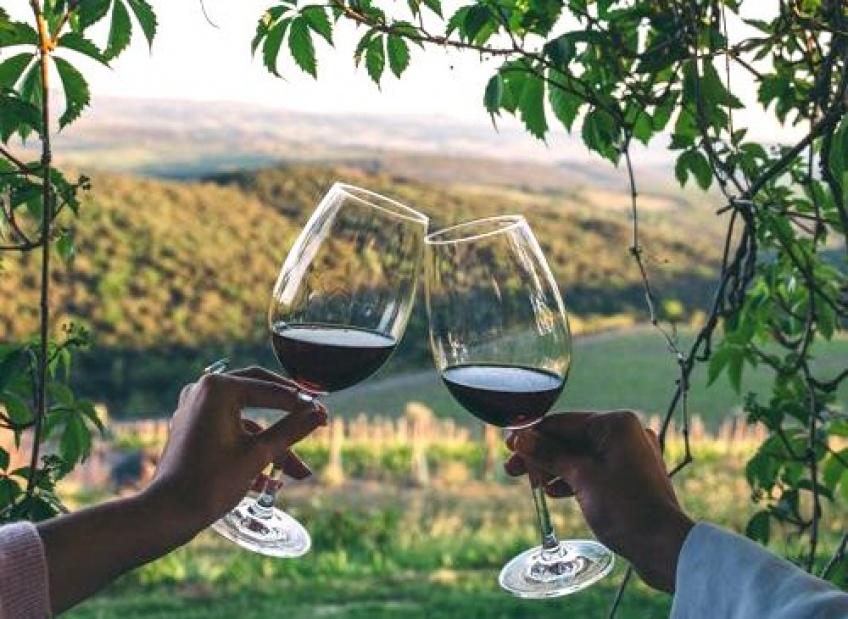 Job de rêve : 10 000$ pour boire du vin en Californie !