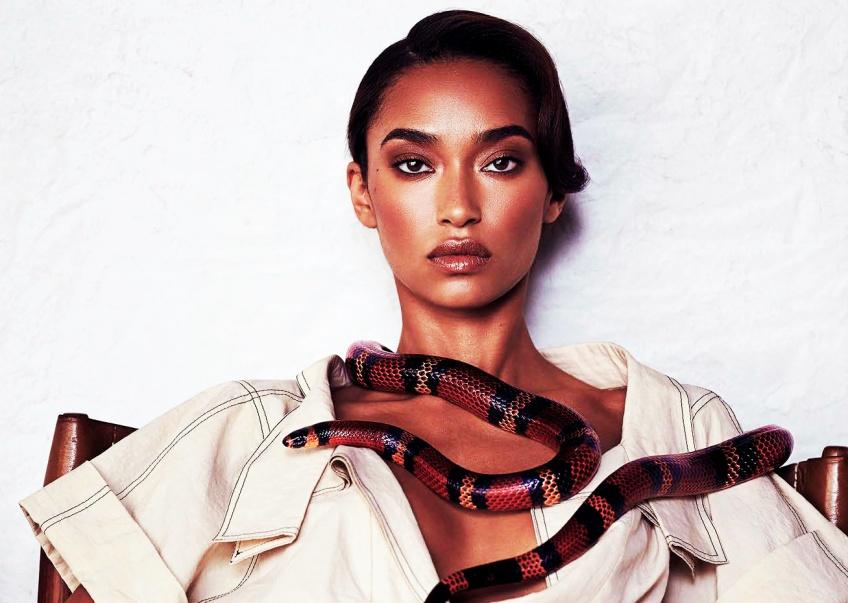 Rêver de serpent : les différentes significations