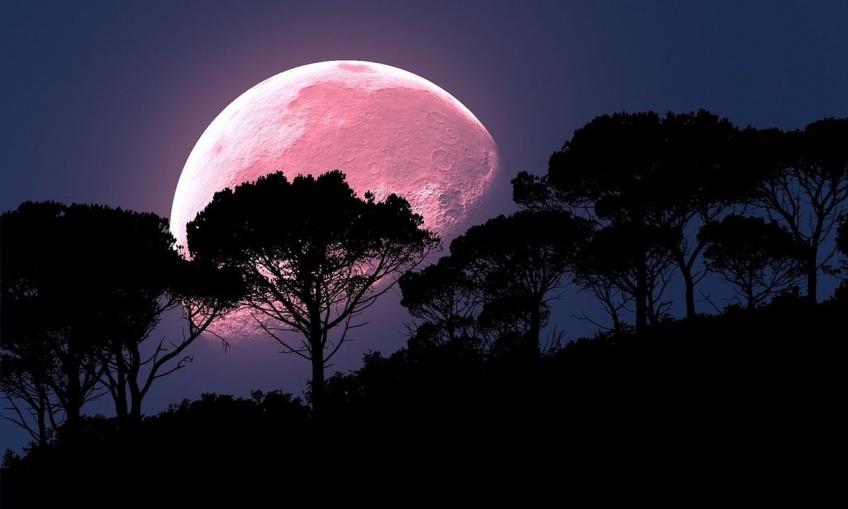 Insolite : Les images époustouflantes de la Super Lune rose 2021