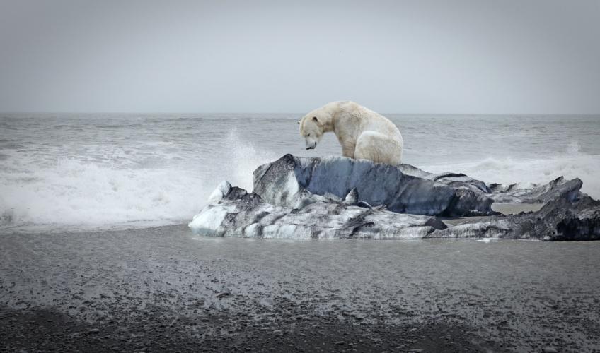 Réchauffement climatique : le point de non-retour est-il déjà franchi ?