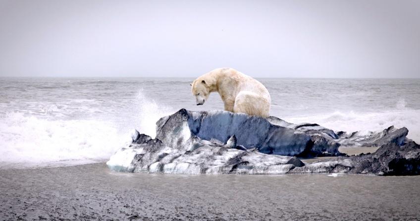Réchauffement climatique : L'humanité menacée 'd'impacts irréversibles'