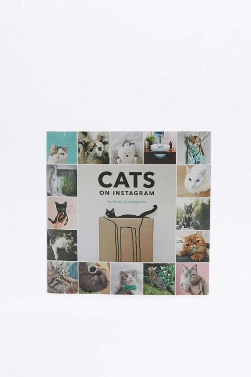 Cats on instagram - Livre