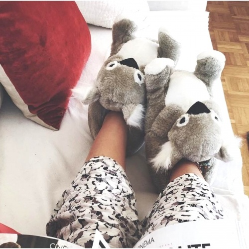 Sleeper'z - Chaussons Koala