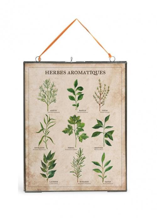 Mina Smoke - Affiche botanique