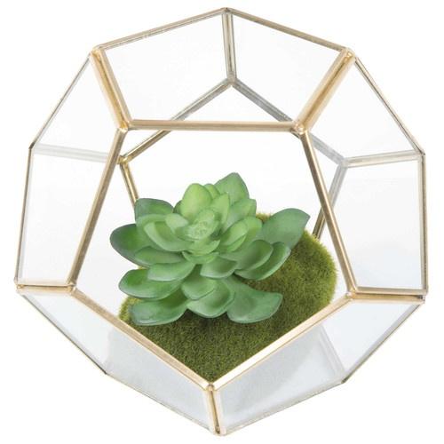 Terrarium en métal