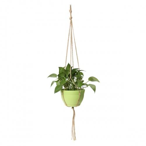 King Do Way - Suspension à plante