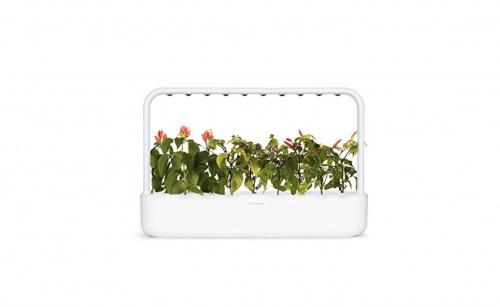 Click & Grow -  Potager d'intérieur autonome 9 plantes