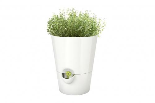 Emsa - Pot à herbes fraîches avec système d'irrigation
