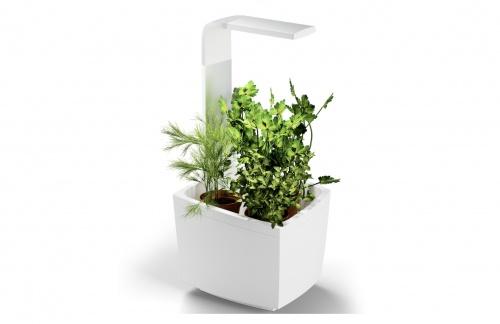 Tregren - Potager d'intérieur Connecté 3 plantes + Kit 4 capsules