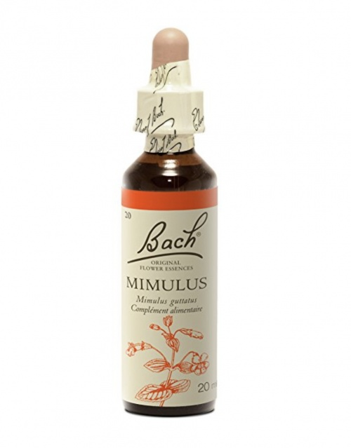 Mimulus - Fleur de Bach