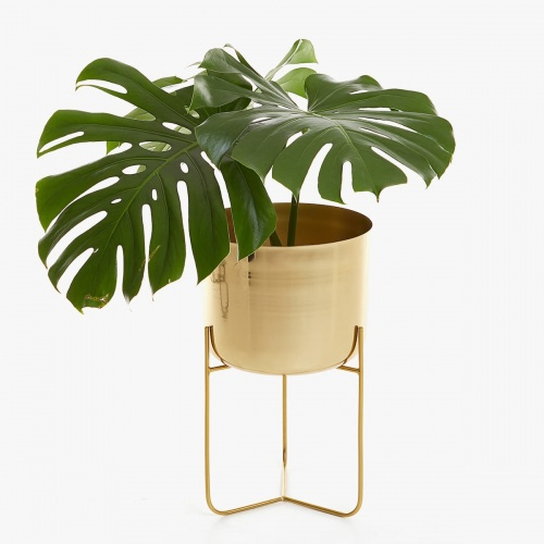 Zara Home - Cache pot