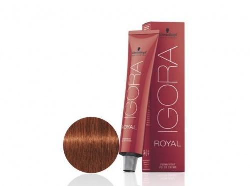 Schwarzkopf - Igora Royal 6-77 Blond Foncé Cuivré