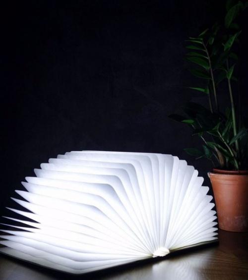 L'avant-gardiste - Lampe livre