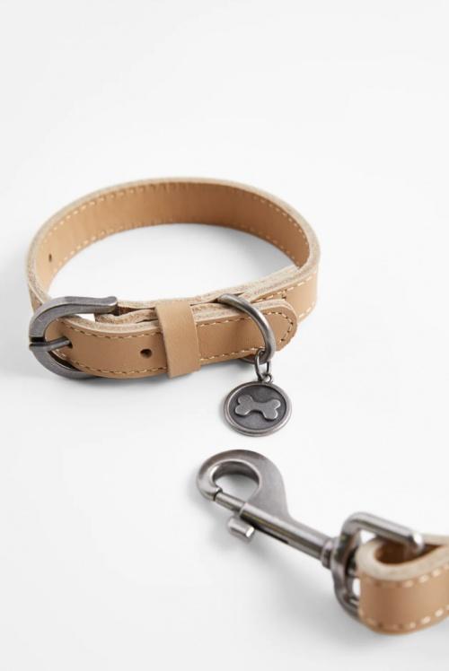 Zara - Kit collier et laisse
