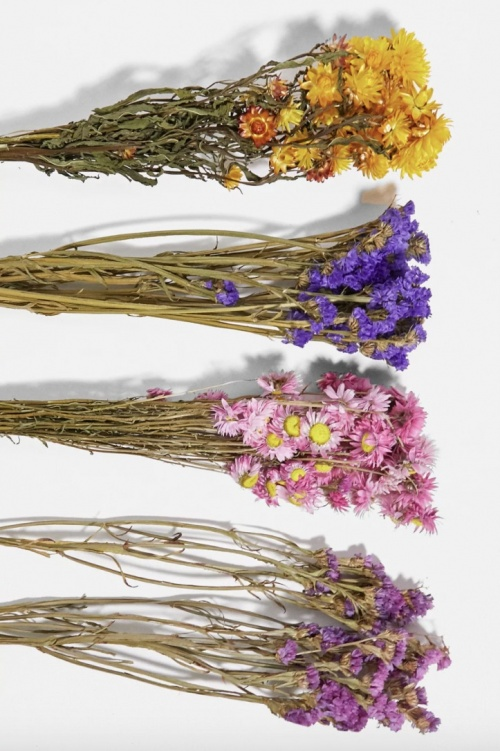 UO - Bouquet de fleurs séchées