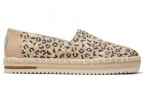 TOMS - Espadrilles léopard