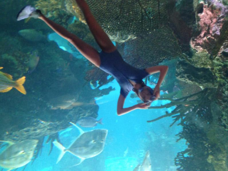 Aquarium de Coney Island, New York